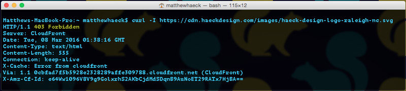 403 Testing WAF Firewall   Cloudfront Hotlinking